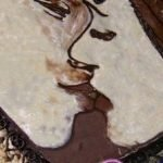 Торт «Поцелуй» с шоколадной аппликацией