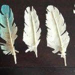 Шоколадные перья для украшения десертов (МК)