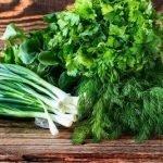 Удобные и эффективные способы хранения зелени